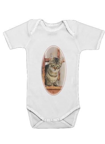 Cute kitten on a rusty iron door  dla Baby short sleeve onesies