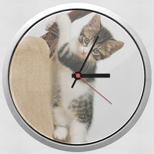 Baby cat, cute kitten climbing for Wall clock