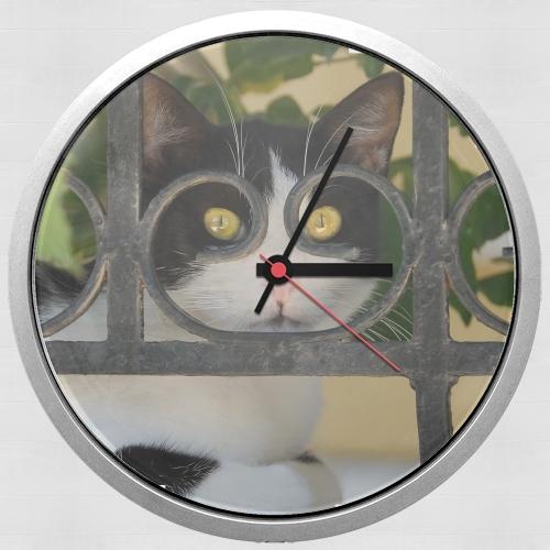 Horloge murale chat avec montures de lunettes elle voit for Horloge en fer forge noir