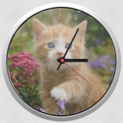 Wall clock Cute ginger kitten in a flowery garden, lovely and enchanting cat