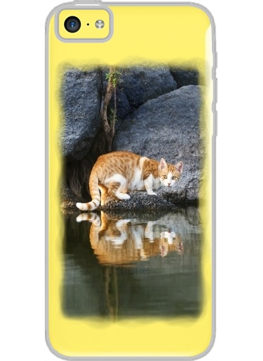 coque iphone 5c rigide cristal transparente cat reflection in pond water white