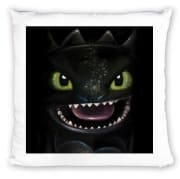 Coussin Night fury