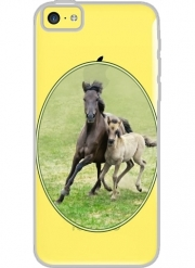 Iphone 5C Hard Case Crystal Transparent Horses, wild Duelmener ponies, mare and foal