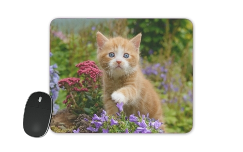 Cute ginger kitten in a flowery garden, lovely and enchanting cat voor Mousepad
