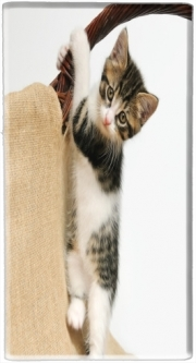 Mini Powerbank Micro USB Emergency External Battery 1720 mAh Baby cat, cute kitten climbing