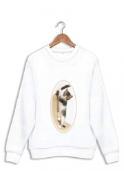 Sweatshirt Bébé chat, mignon chaton escalade