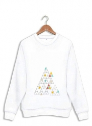 Sweatshirt Triangle - Native American