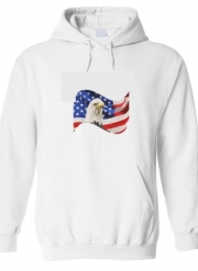 Sweat à capuche American Eagle and Flag