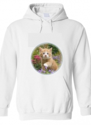 Hoodie Cute ginger kitten in a flowery garden, lovely and enchanting cat