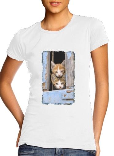 Junge Katzenkinder in einem alten Fenster für Damen T-Shirt